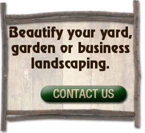 beautify your yard garden or business landscaping